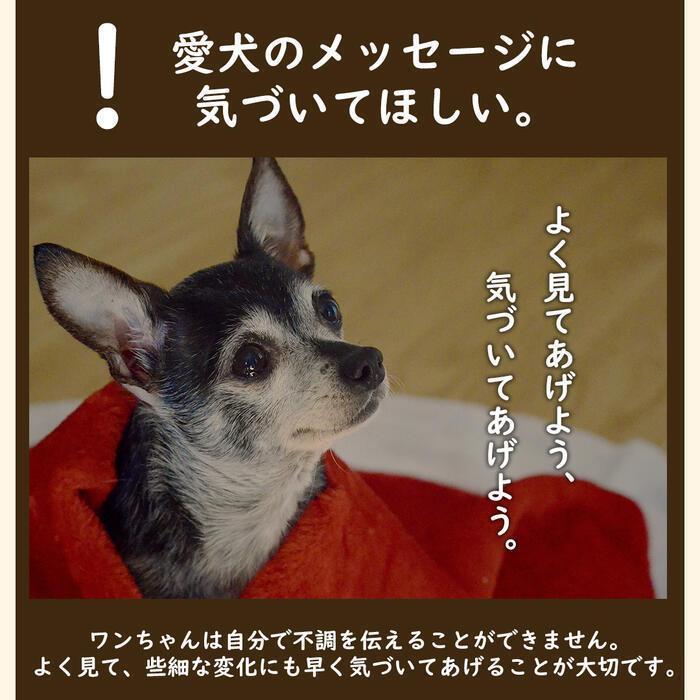【特許成分 ECME 配合】Wan Royal ワンロイヤル 関節 サポート 犬 犬用 老犬 サプリ サプリメント グルコサミン ドッグフード おやつ ギフト プレゼント celen 04