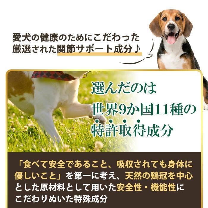 【特許成分 ECME 配合】Wan Royal ワンロイヤル 関節 サポート 犬 犬用 老犬 サプリ サプリメント グルコサミン ドッグフード おやつ ギフト プレゼント celen 05