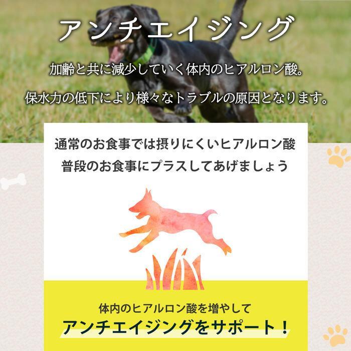 【特許成分 ECME 配合】Wan Royal ワンロイヤル 関節 サポート 犬 犬用 老犬 サプリ サプリメント グルコサミン ドッグフード おやつ ギフト プレゼント celen 10