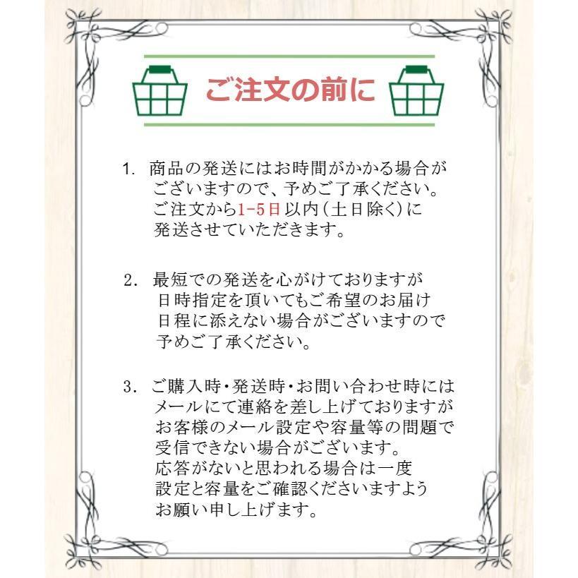3DS 本体 任天堂 すぐ遊べるセット  送料無料 選べる6色 centerwave 02