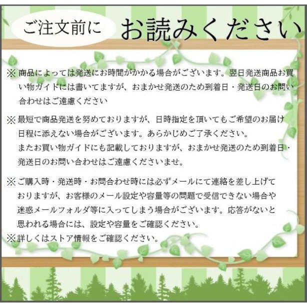 Wii 本体のみ シロ 白 中古 送料無料|centerwave|03