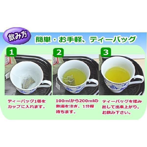 べにふうき茶 ティーバッグ 3g×15個入り10袋セット|chabatakechokusoubin|03