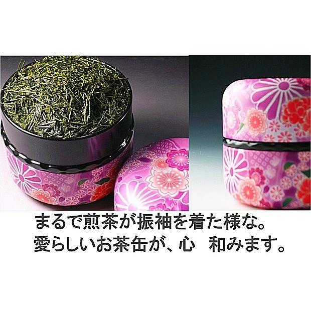 母の日 ギフト 2021 プレゼント 緑茶、日本茶 ギフト 世界遺産 富士山の特上煎茶セット 初摘み新茶50gと八十八夜摘み新茶50g|chabatakechokusoubin|03