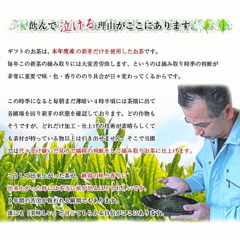 母の日 ギフト 2021 プレゼント 緑茶、日本茶 ギフト 世界遺産 富士山の特上煎茶セット 初摘み新茶50gと八十八夜摘み新茶50g|chabatakechokusoubin|07