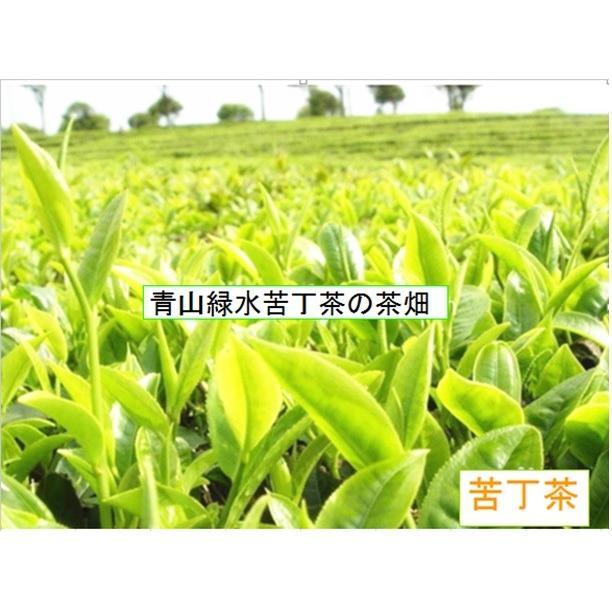特級 苦丁茶12g ニガ茶 くてい茶 青山緑水 100%新芽緑茶の高価貴重希少品 くていちゃ Seasonal Wrap入荷 全品送料無料