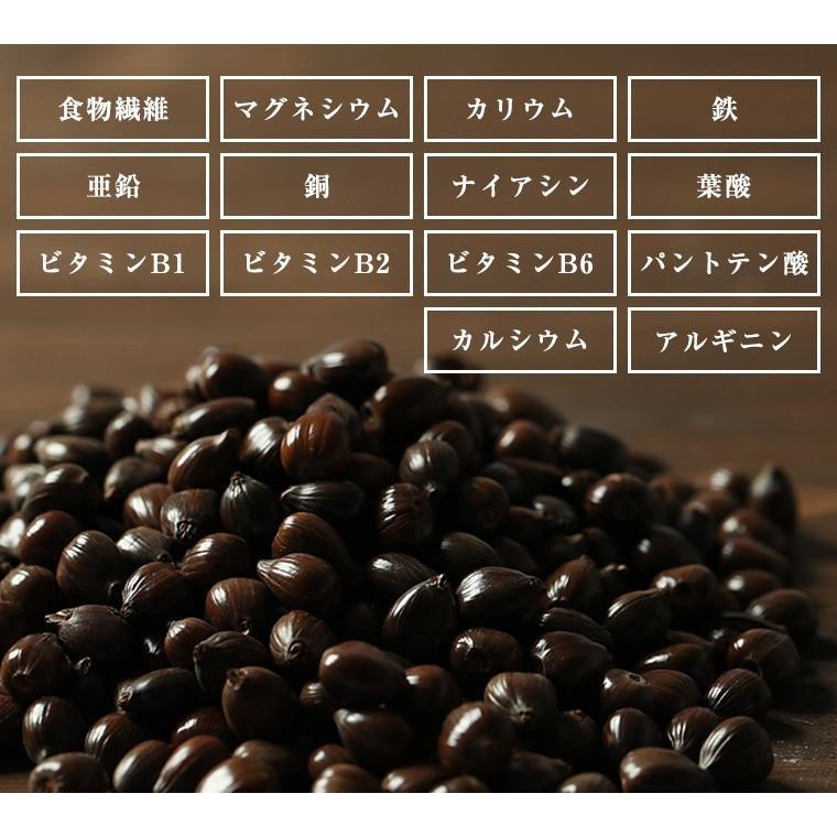 はとむぎ そのまま食べる はと麦 ハトムギ スナック 100g 送料無料 はとむみ 煎り 焙煎 美容 健康 ヨクイニン はと麦茶 はとむぎ茶 国内製造 シリアル|chamise|08