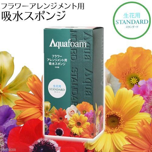 アクアフォーム 別倉庫からの配送 日本産 フラワーアレンジメント用 吸水スポンジ スタンダード 生花用