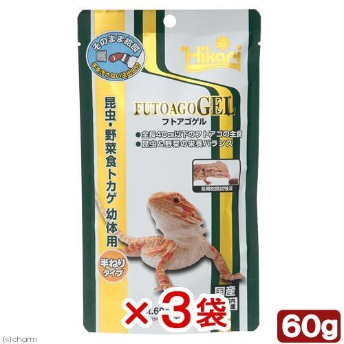 海外 人気上昇中 キョーリン フトアゴゲル 3袋入り 60g