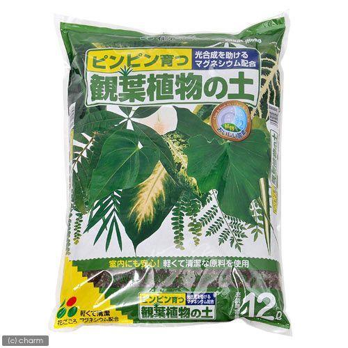 激安価格と即納で通信販売 5☆大好評 花ごころ 観葉植物の土 お一人様6点限り 12L