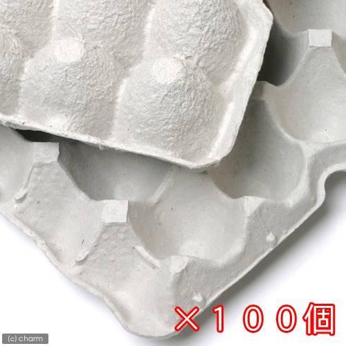 永遠の定番 紙製卵トレー 新作入荷 45×29cm 100枚セット 昆虫 コオロギ 飼育 お一人様1点限り ハウス ケース