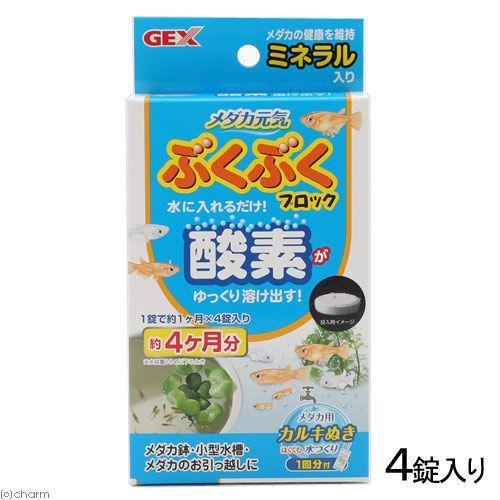 買物 GEX メダカ元気ぶくぶくブロック 高い素材 酸素 メダカ