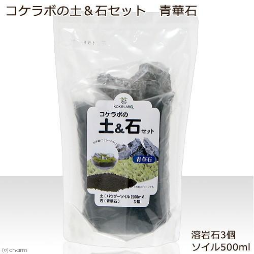 カミハタ コケラボの土&石セット 青華石 苔テラリウム