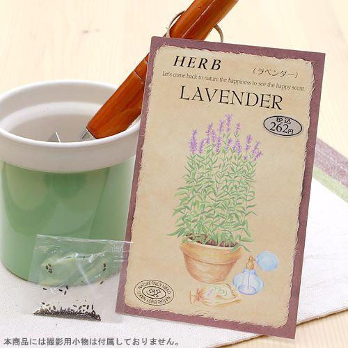 ハーブ HERB 買収 ラベンダー 家庭菜園 店舗 品番:813