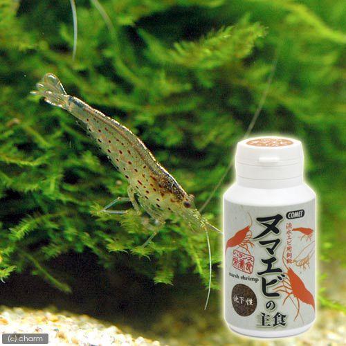 コメット 本物◆ ヌマエビの主食 沈下性 40g 格安激安