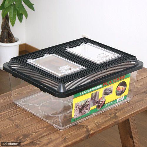飼育容器 即日出荷 特大フラット 黒 430×340×190mm プラケース 新発売 虫かご 昆虫 お一人様4点限り