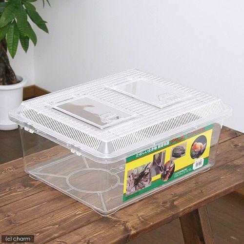 飼育容器 特大フラット クリア 全国一律送料無料 ランキングTOP10 430×340×190mm プラケース 虫かご 昆虫 お一人様4点限り