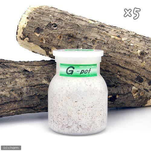 メーカー直送 冷蔵 菌糸ビン G−pot 550cc 5本 別途クール手数料 常温商品同梱不可 買い取り