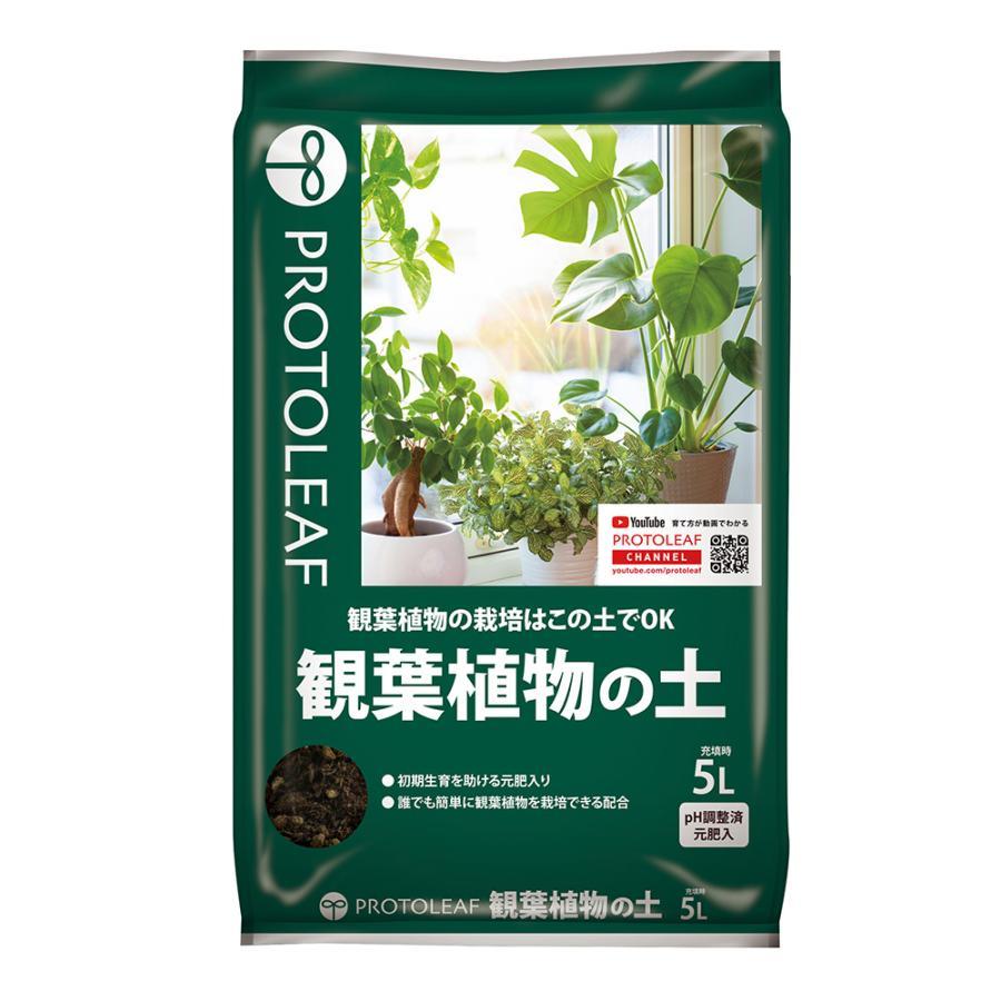 特価キャンペーン 業界No.1 観葉植物の土 5L