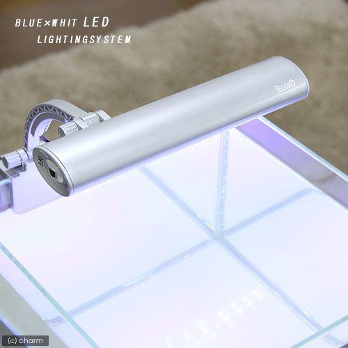 送料無料激安祭 セール 登場から人気沸騰 テトラ LEDミニライト LED−MINI 小型水槽用照明 アクアリウムライト 熱帯魚 水草