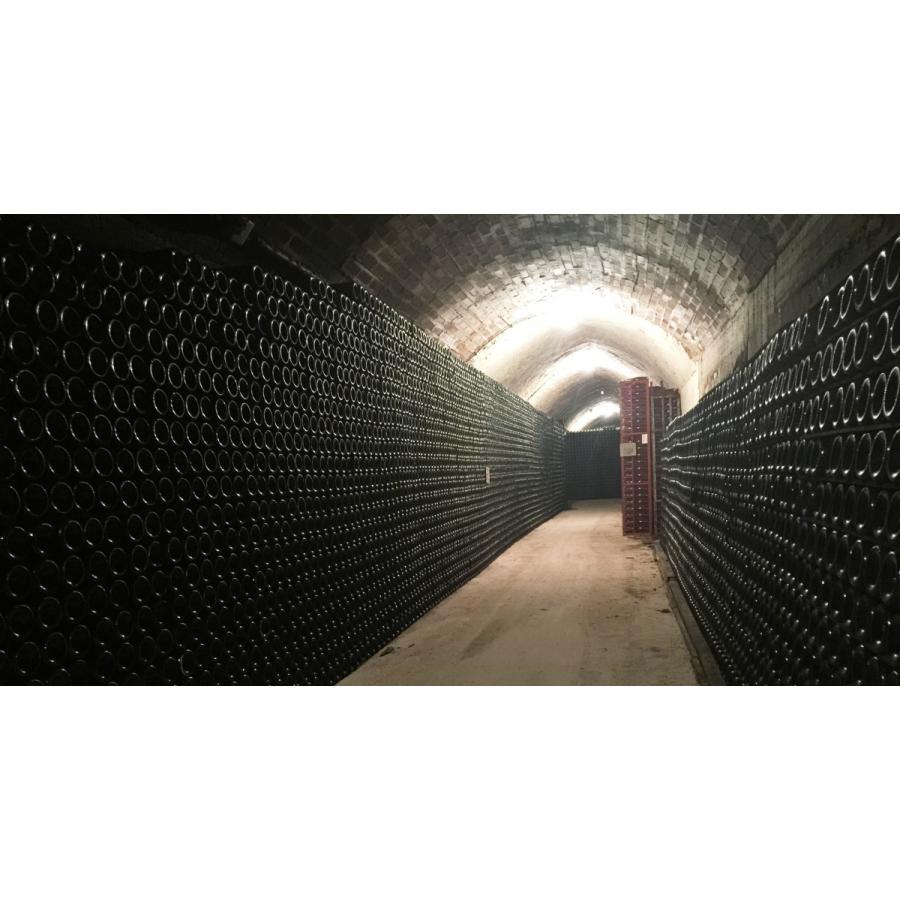 シャンパン ロベール デブロス TORADITION トラディション 箱無し 750ml 辛口 NV|chanpanwain|07