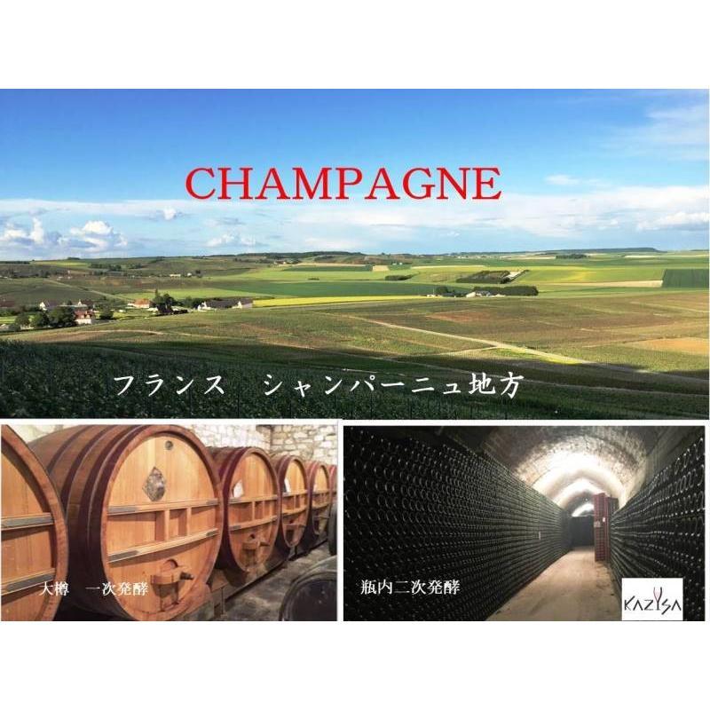 シャンパン ロベール デブロス ミレジム 2010年 750ml12%VOL  辛口 箱無し |chanpanwain|02