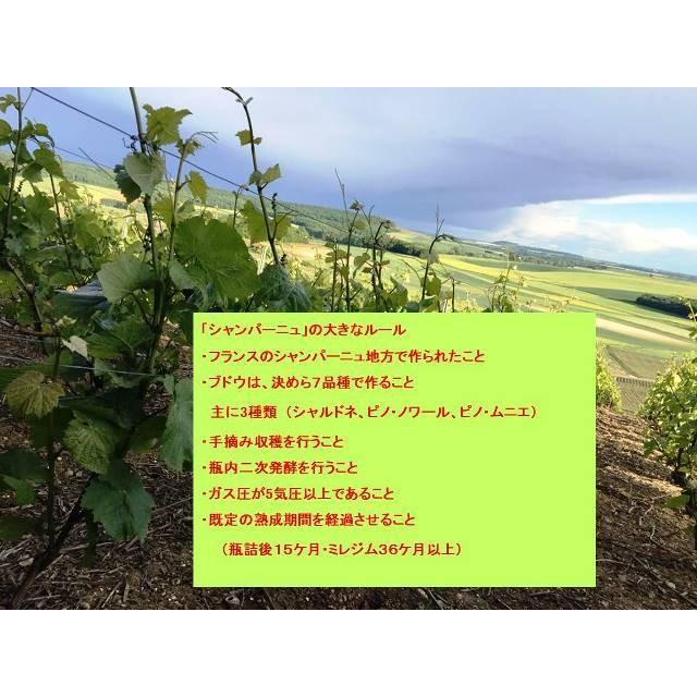 シャンパン ロベール デブロス ミレジム 2010年 750ml12%VOL  辛口 箱無し |chanpanwain|08