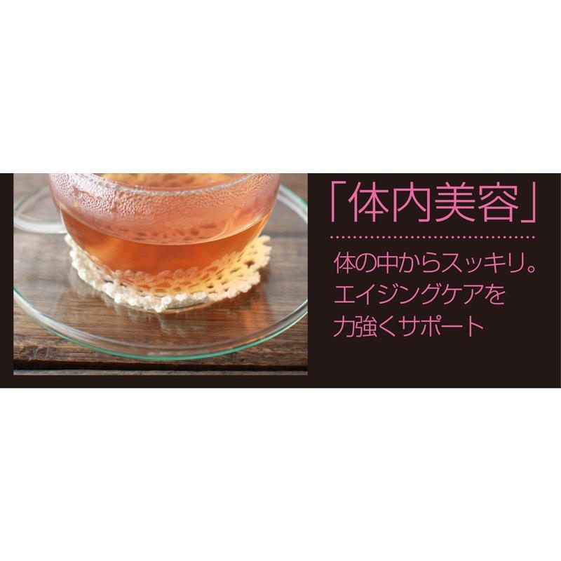ごぼう茶 国産ごぼう茶ティーバッグ 40包セット ネコポス便 送料無料 ゴボウ茶 牛蒡茶|chashoan|07
