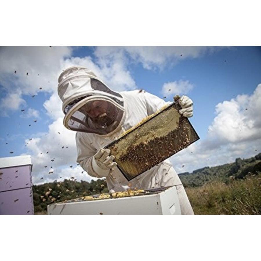 マヌカハニー エグモントハニー UMF10+ MGO263+ 250g まぬかハニー 蜂蜜 はちみつ 父の日 プレゼント 父の日 はちみつ|chibamart|04