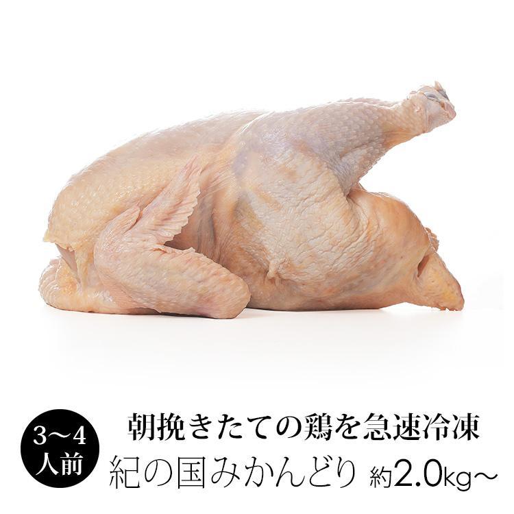 丸鳥 紀州うめどり 中抜き 評判 丸鶏 1羽 人気ショップが最安値挑戦 約2kg〜 国産 での代用出荷 冷凍 紀の国みかんどり その他ブランド鶏 鶏肉