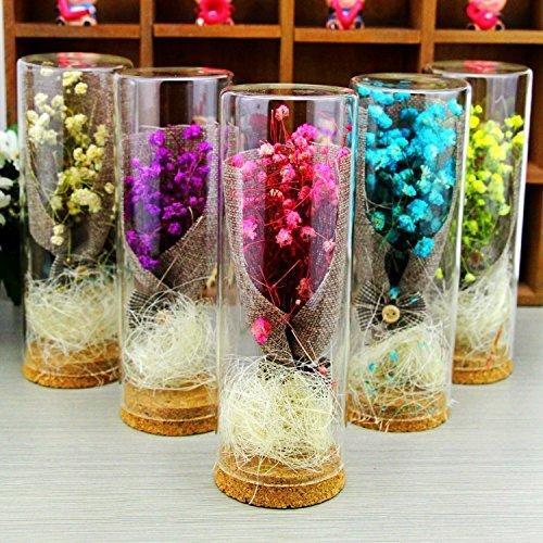 超特価セール コルク瓶 コルク ビン コルク栓付 ガラス 容器 保存瓶 おしゃれインテリア ガラス瓶 花瓶 10*3cm (12 chill-89 03