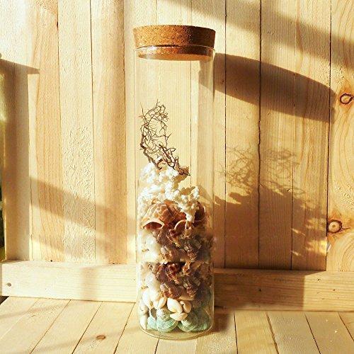 超特価セール コルク瓶 コルク ビン コルク栓付 ガラス 容器 保存瓶 おしゃれインテリア ガラス瓶 花瓶 10*3cm (12 chill-89 06