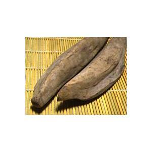 鰹(かつお)本節 450グラム 鰹節・土佐節・枯れ節 腹節・背節の2本セット HMYS|chokuhan