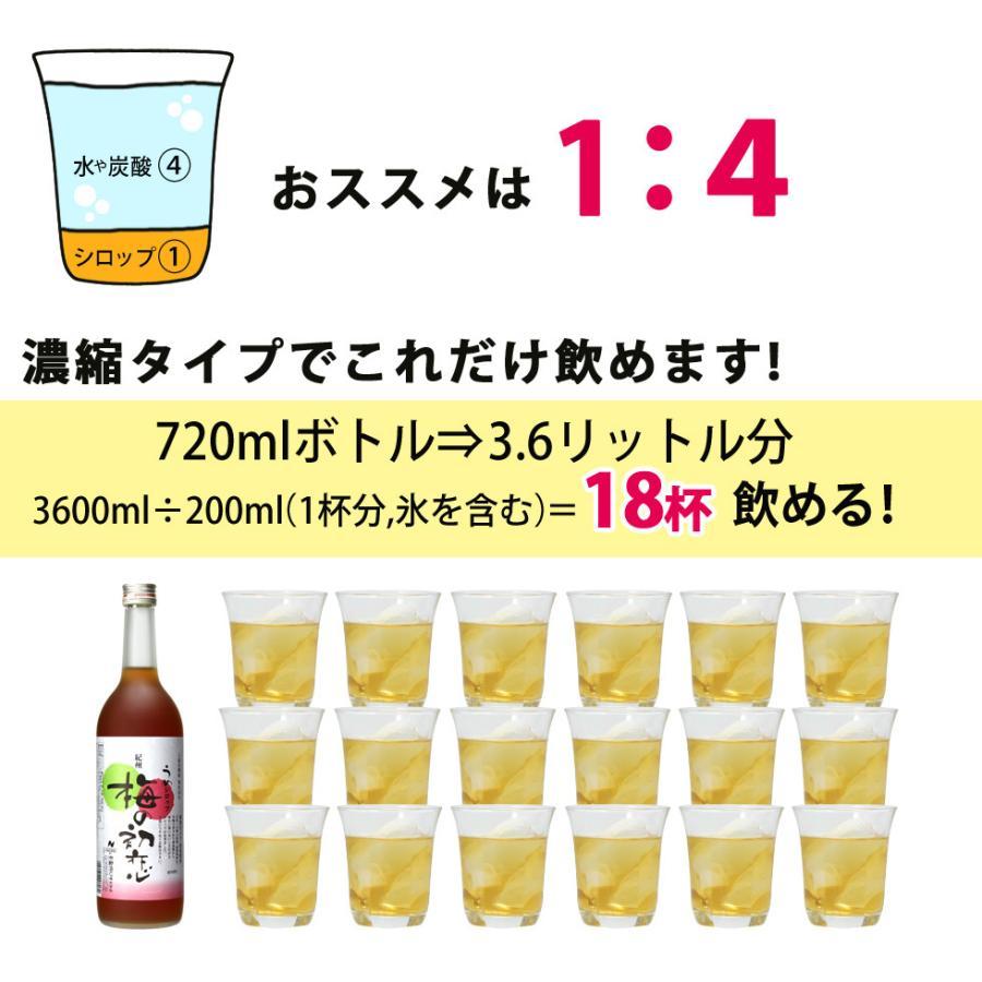 梅ジュース 梅シロップ 濃縮 かき氷 chokyuan 02