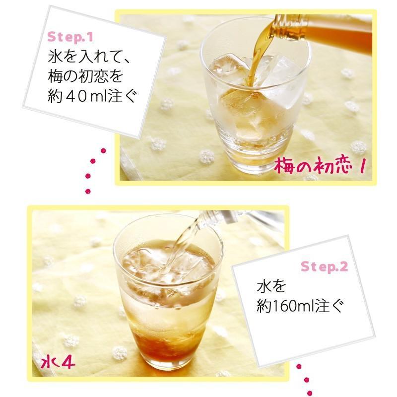 梅ジュース 梅シロップ 濃縮 かき氷 chokyuan 03