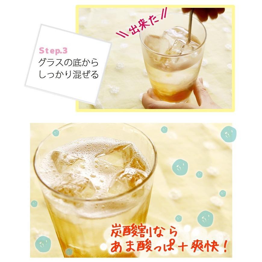 梅ジュース 梅シロップ 濃縮 かき氷 chokyuan 04