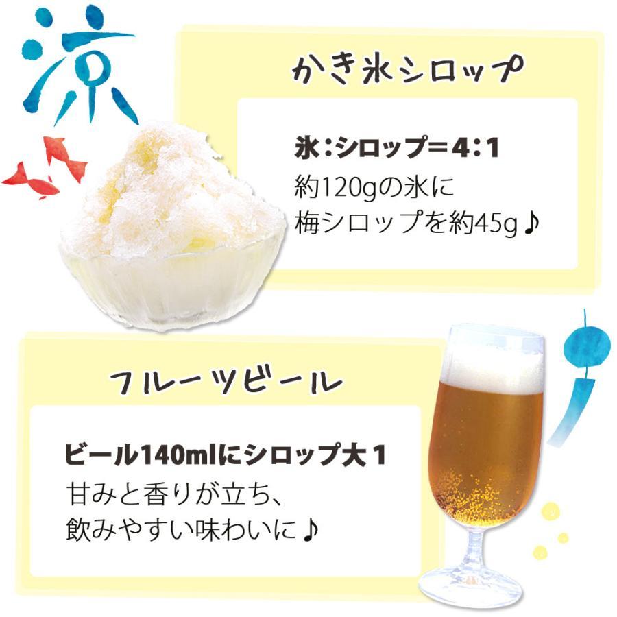 梅ジュース 梅シロップ 濃縮 かき氷 chokyuan 05