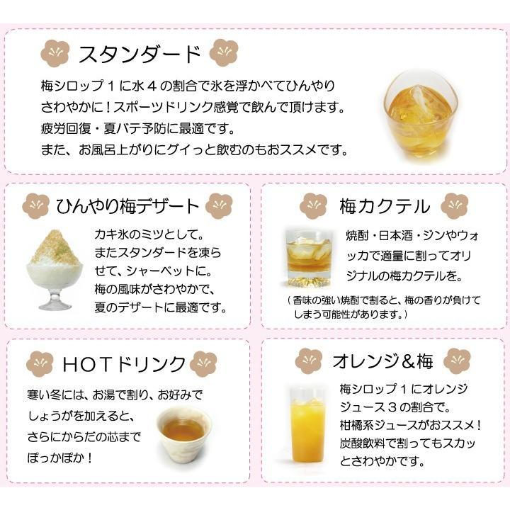 梅ジュース 梅シロップ 濃縮 かき氷 chokyuan 06