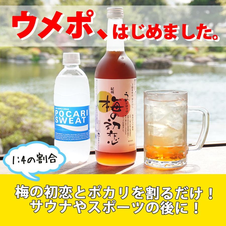 梅ジュース 梅シロップ 濃縮 かき氷 chokyuan 07