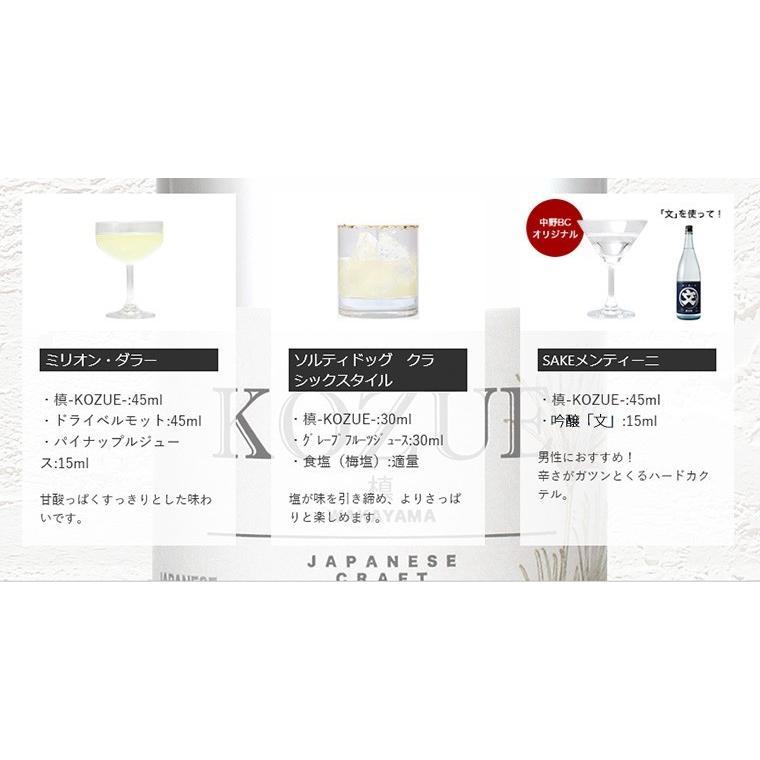 ジン クラフトジン 和製ジン chokyuan 13