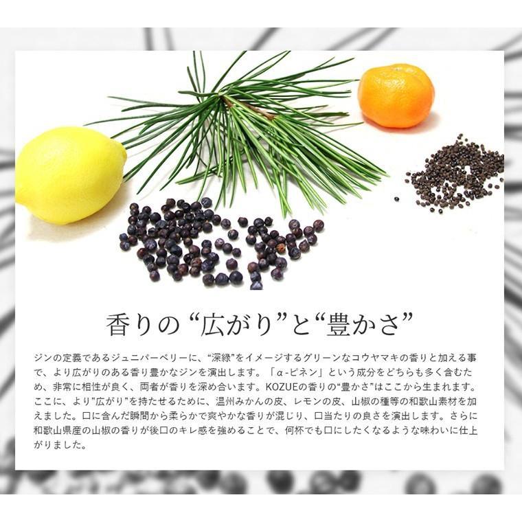 ジン クラフトジン 和製ジン chokyuan 09