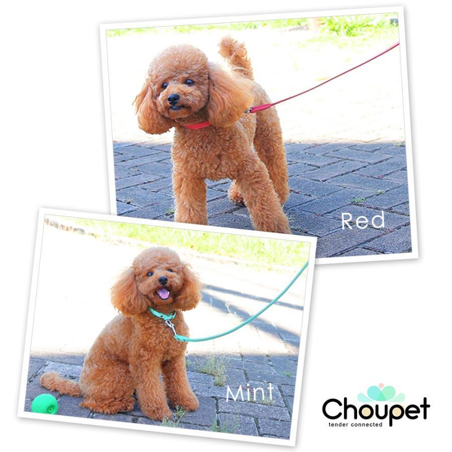 犬 リード 犬用リード 小型犬 革 革製 皮 本革 レザー 栃木レザー おしゃれ かわいい 犬のリード 首輪 シンプル 10mm choupet 04