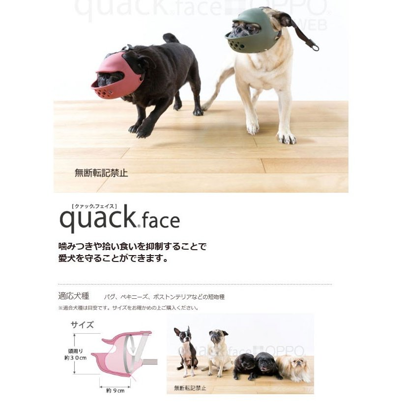 ク (犬種)