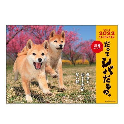 カレンダー 2022年 だってシバだもの 壁掛け 70%OFFアウトレット スケジュール 格安 価格でご提供いたします アクティブコーポレーション いぬ 柴犬 写真