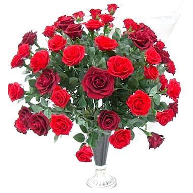 プリザーブドフラワー花60本の大輪の赤いバラリッチレッドローズファンアレンジ