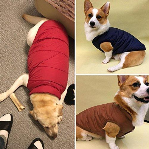 Emfay ペット服 犬服 コート ジャケット ダウン ボタン留めタイプ 防寒 冬服 ドッグウェア コーヒー L L コーヒー|clartellc|07