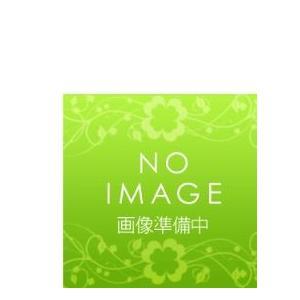 三菱 業務用エアコン 部材【PAC-KK95DP】集中排水ドレンパン