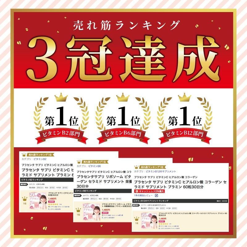 プラセンタ サプリ ビタミンC ヒアルロン酸 コラーゲン セラミド サプリメント プラミン 60粒30日分 cm-japan 02