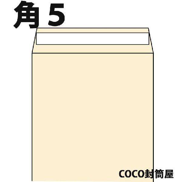 角5封筒 贈り物 テープ付 クラフト A5 新作製品 世界最高品質人気 紙厚85g 1000枚 本 角5 数量が2個以上の際は指定日にお届けできない場合があります DVDの発送用に 茶封筒