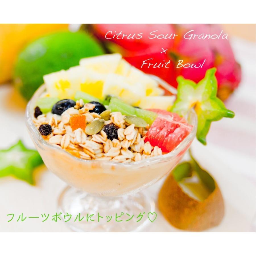 ◆セール特価品◆ No.7 Citrus 《週末限定タイムセール》 シトラスサワー Sour