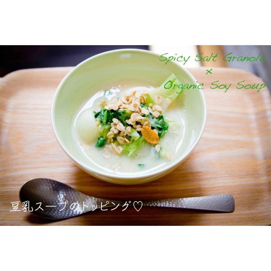 No.8 Spicy Salt (スパイシーソルト) cocolokyoto 04